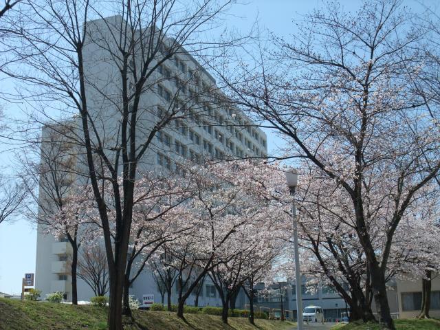 地方独立行政法人大阪府立病院機構 大阪はびきの医療センター 1枚目