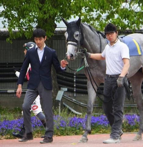 20〜30代の男女厩務員が活躍しています!また、有名競走馬の子どもも飼育中♪これからが楽しみですよ。