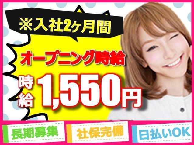 株式会社THビジネスサポート 船橋/J051-810-haneda