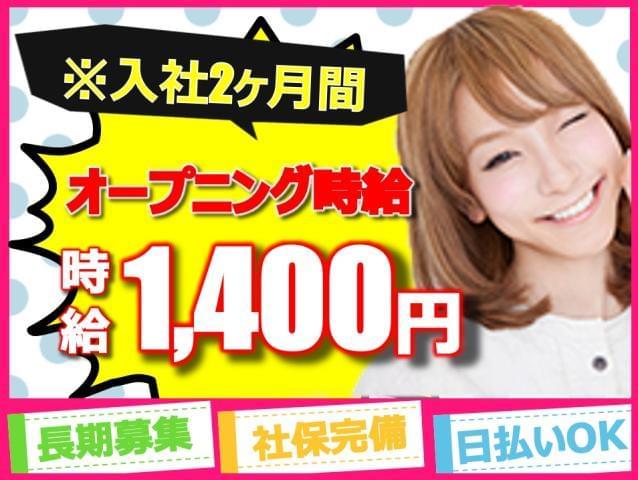株式会社THビジネスサポート 名古屋/J070-628