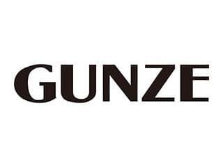 Gunze 1枚目