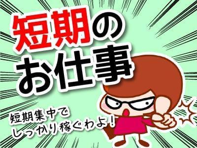 人材プロオフィス株式会社 埼玉営業所/12-963