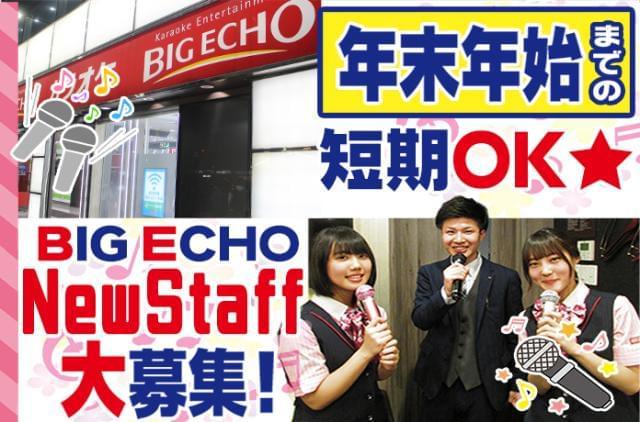 BIG ECHO (株式会社第一興商) 2枚目