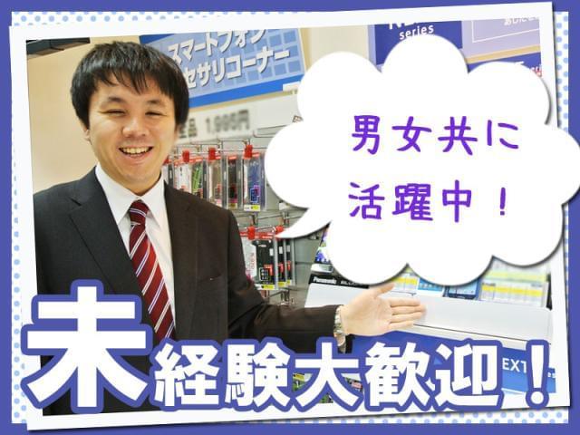 株式会社日本パーソナルビジネス 【N1_300082】
