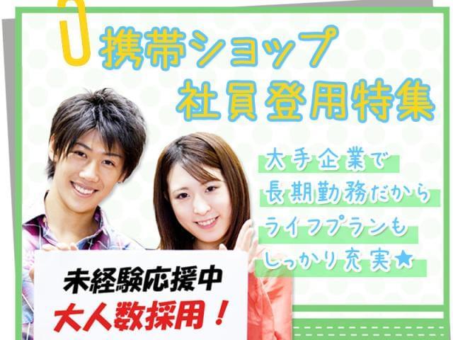 株式会社日本パーソナルビジネス 【仕事No. A11_263】