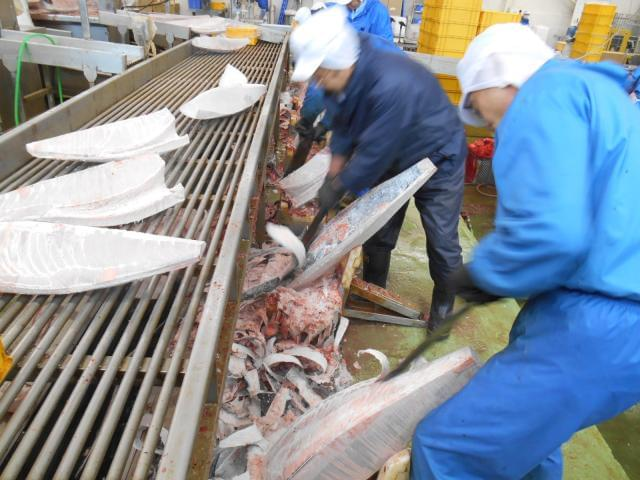 「三菱商事」グループの水産商社で安定したお仕事を!まずはお気軽にご連絡ください☆