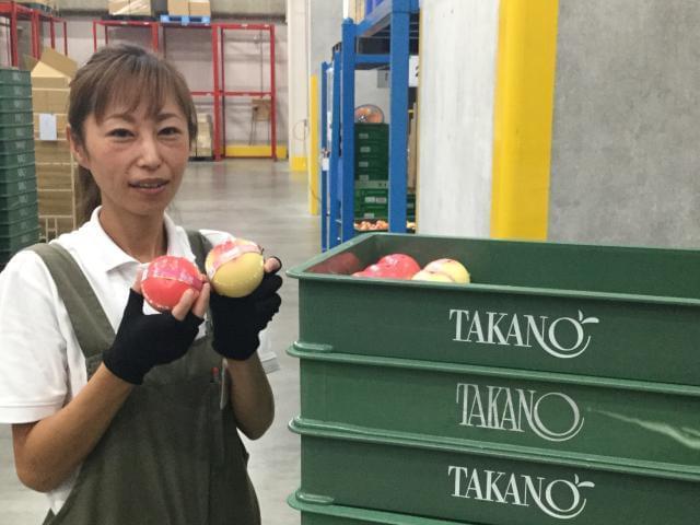 「新宿高野」物流センターでのお仕事。 有名店の商品を扱う安心感とワクワク感が味わえる!
