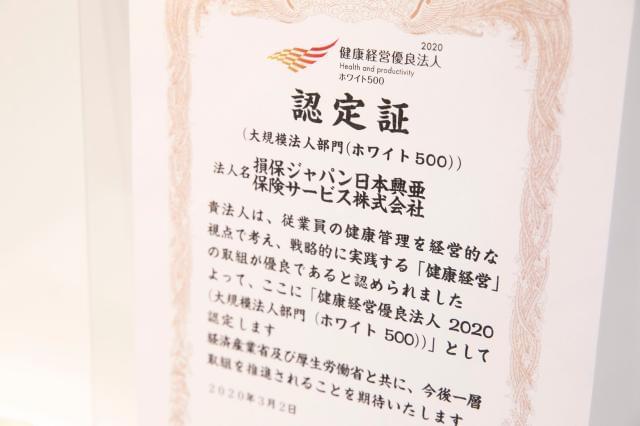ジャパン パートナーズ 損保