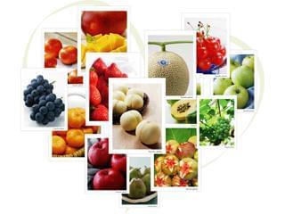 クオリティの高い青果物を皆さまにお届けするため、日々努力を重ねています。