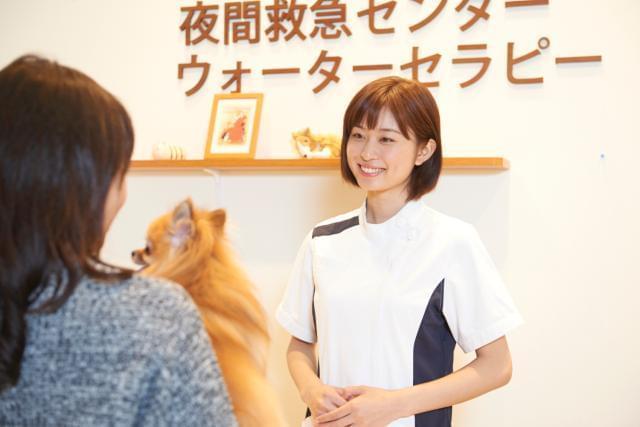 イオンペット株式会社 イオン動物医療センター幕張新都心(686179)