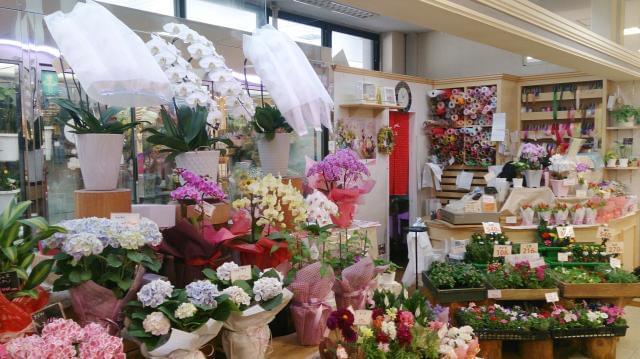 スーパーの中にあり、たくさんのお客様に親しまれているお花屋さんです♪